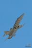 RAAF F/A-18 Hornet air display