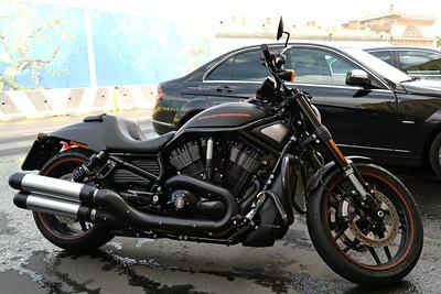 Harley Russia