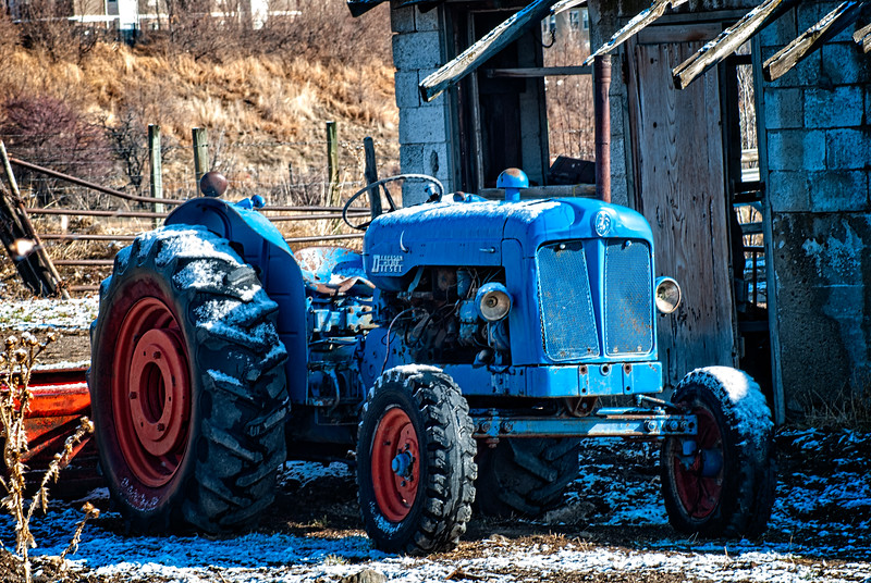 This little blue tractor was calling to me to be remembered