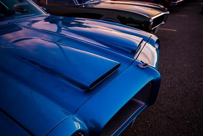 Pontiac beaks
