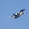 F-18 Super Hornet.