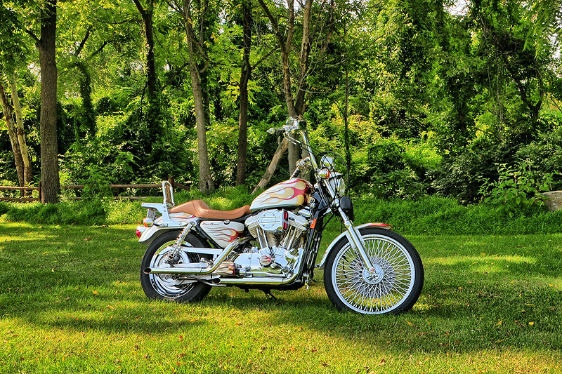 20140816_Steves_Harley_024_out
