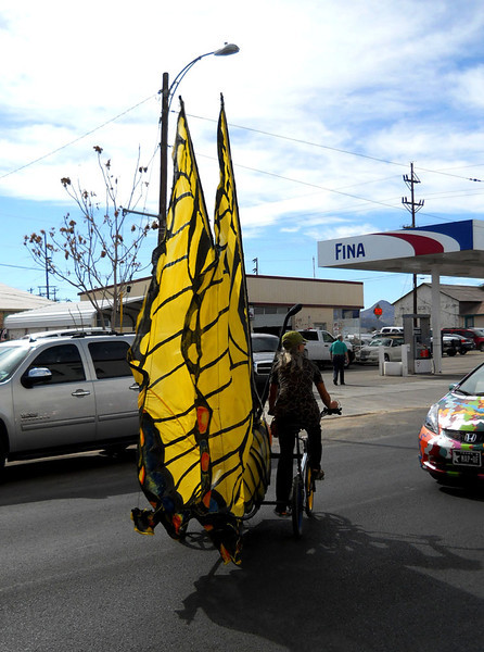 TIGER SWALLOWTAIL BUTTERFLY BIKE<br /> There were two of these butterfly bikes weaving in and out of the parade. Very creative inventions. You'll see their wings popping up above some of the cars in the following pictures.