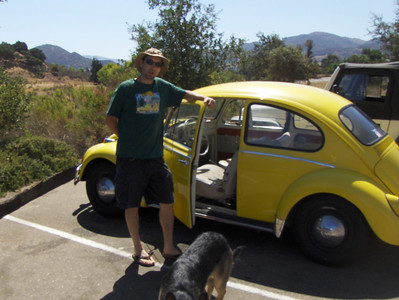 1965 Bug (Electrical Conversion)