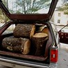 I fit 16 log sections in there total.  1,250 pounds.  Probably in excess of recommended GVWR...