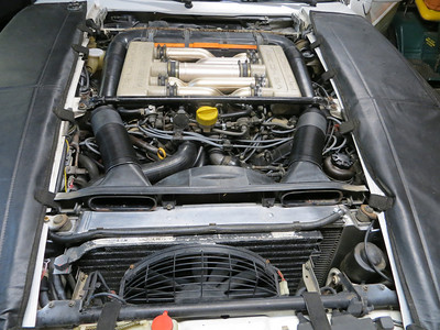 Engine bay pics