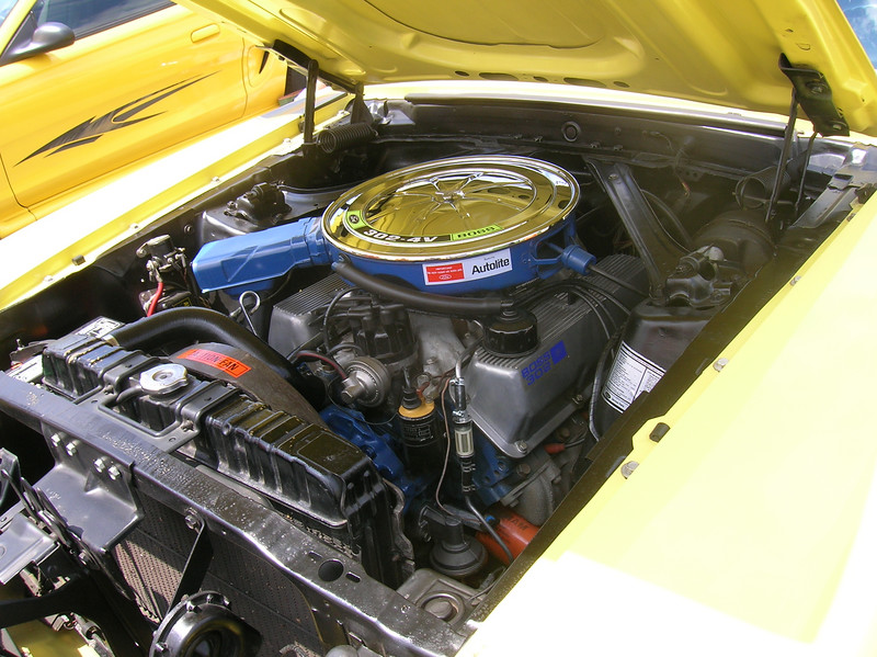 Reminds me of my 1972 351 Cobra Jet engine and air cleaner