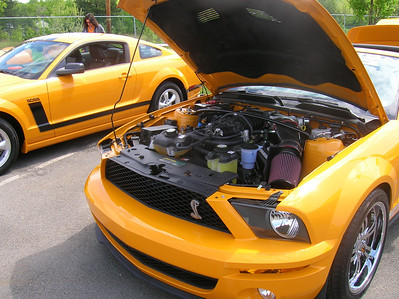 Packin' the ponies into the engine bay