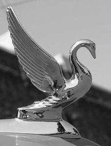Packard (49051752)