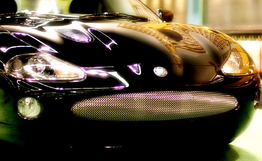 Jaguar (39224145)