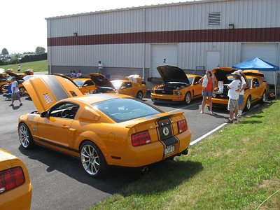2010 BOGO Rally