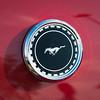 1969 Mustang Mach 1 - Badge