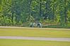 2012-04-15-16-06-12_CRS4231