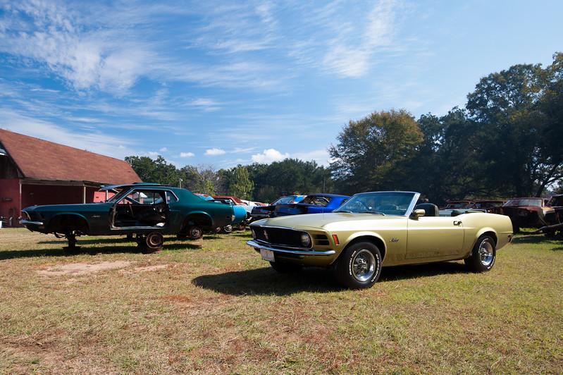Mustang Village Pensacola-2