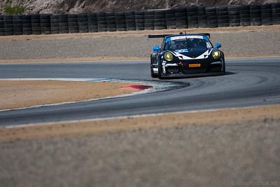 #17 Dempsey Racing Porsche 911 GT America