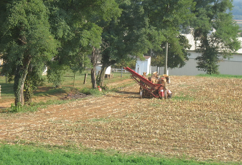 We passed a number of Amish farms along the way and saw this horse-drawn machine in one field.