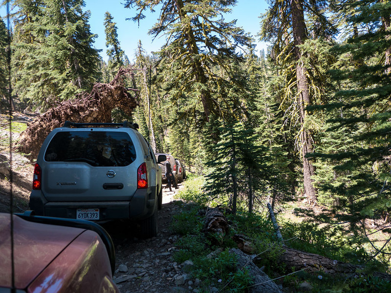 Another photo op stop.  That big brown mass above the silver Xterra is a root ball from a large fallen tree.  It kind of hangs over the trail here.  This is on Mattley too.