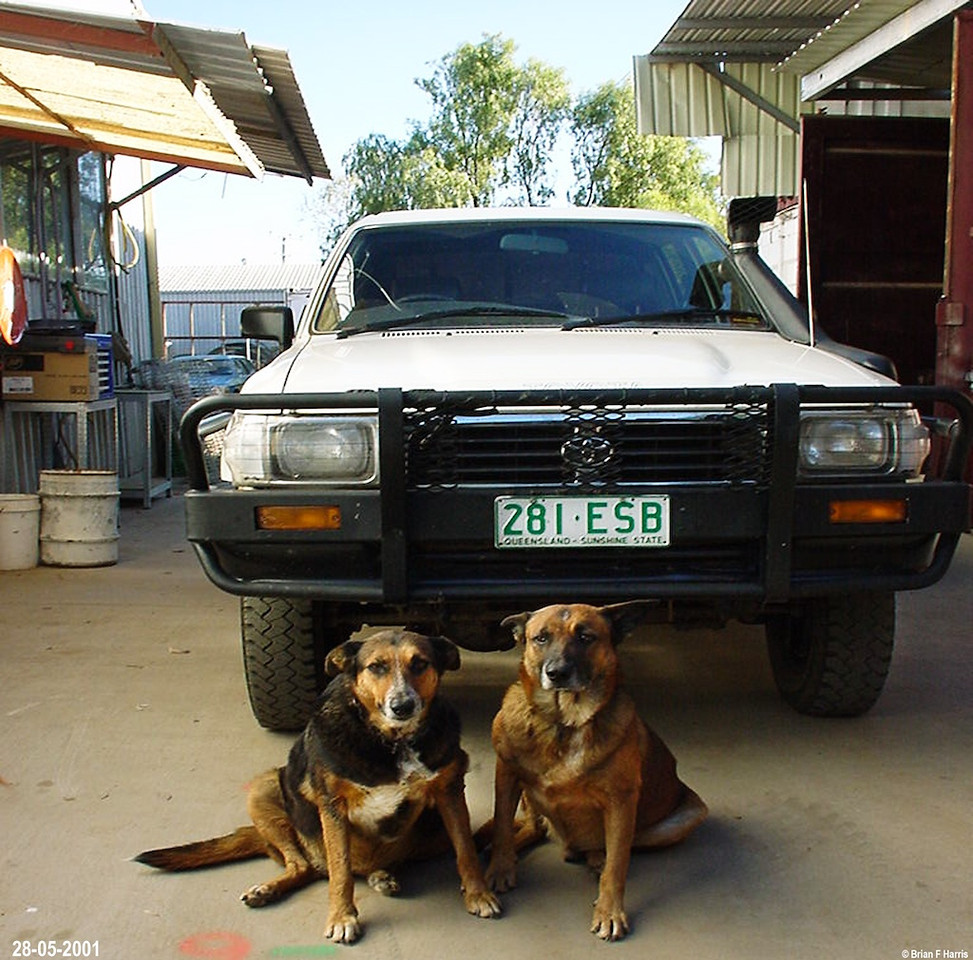 Sad day as manager is trading 'real' Toyota Hilux on a soft roader, Holden Izuzu Rodeo to suit his wife .
