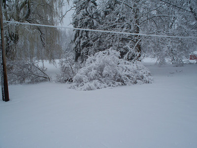 5-Apr-09 Last Big Snow and Acadia on 11-Apr-09