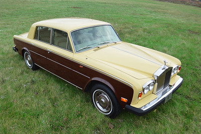 79 Silver Shadow II Champagne over Chestnut