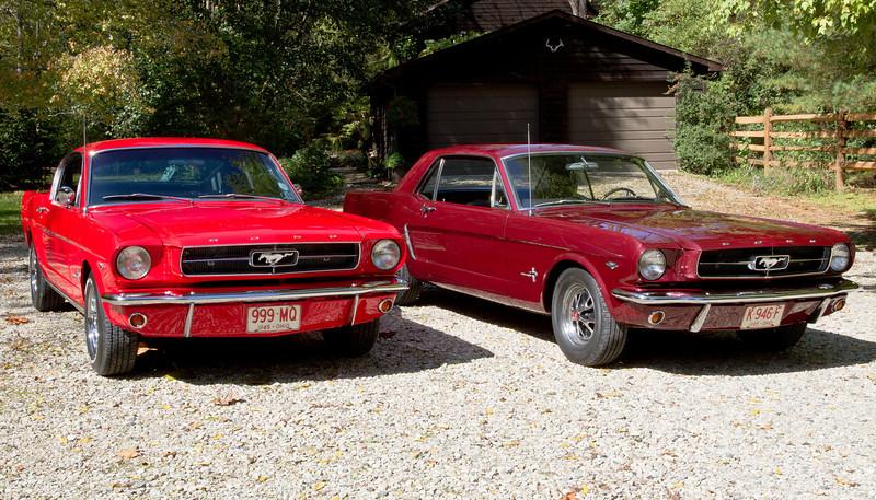 A Pair of Ponies