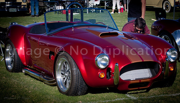 AC Cobra By Dr. Alan Rogers - Debut!