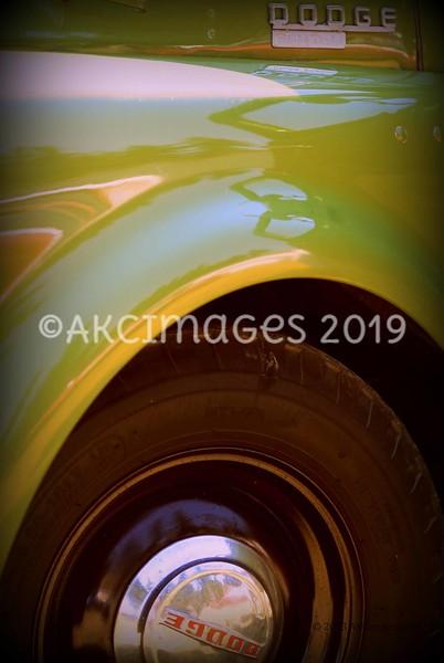 AKC_7310