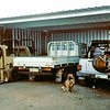 Our big old forklift with 'ArmStrong' steering. '80 Diahatsu 4x4 F-55 tray & '94 Asia Rocsta 4x4 SWB