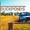 Duckponds family large scale agricultural farm is now operated as large coal mine and called Ensham