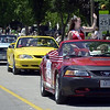 Parade of Mustangs