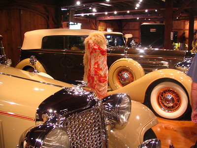 The Collings Foundation - Packard 7-passenger Phaeton with period party dress