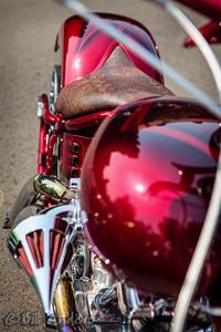 Snakeskin  Thunderstruck Custom Motorcycle Show, Medford, Oregon 2013.