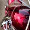 Snakeskin<br /> <br /> Thunderstruck Custom Motorcycle Show, Medford, Oregon 2013.