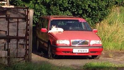 Banger van 733 Stephan Rinck Volvo 850 estate