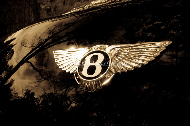 Bentley Wings