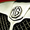 MG Wire Mesh Grill