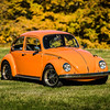 Bobs Orange Bug-36