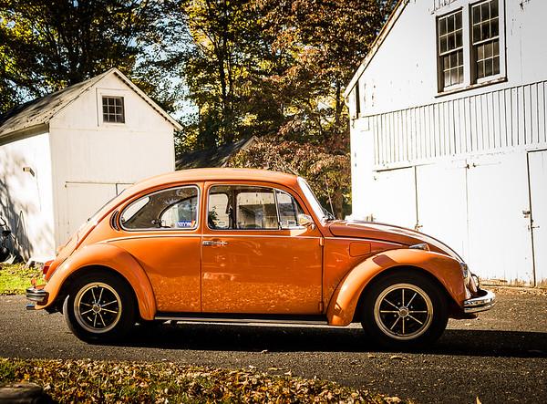 Bobs Orange Bug-21