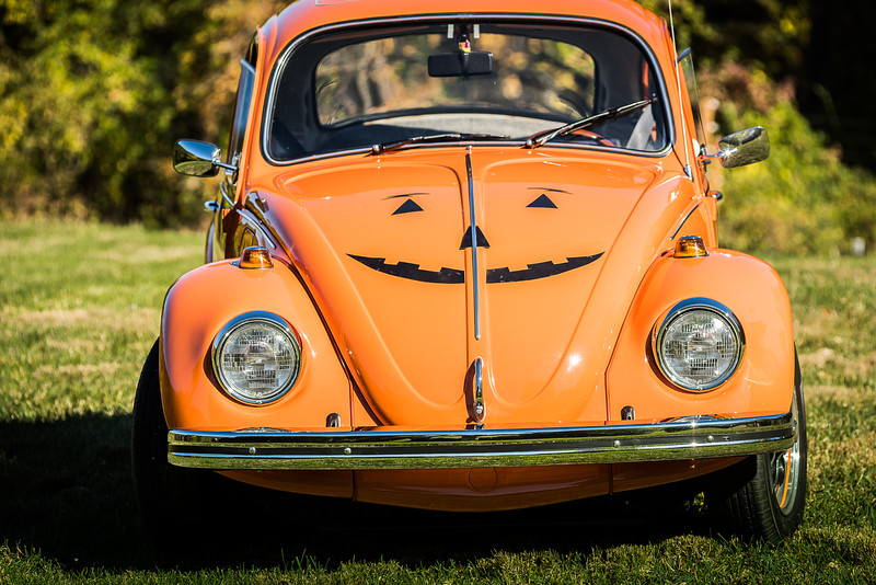 Bobs Orange Bug-91
