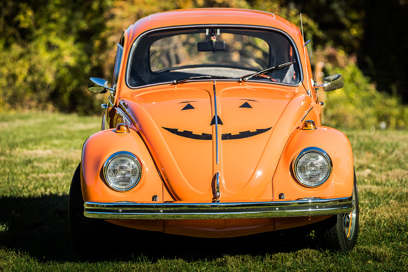 Bobs Orange Bug-93