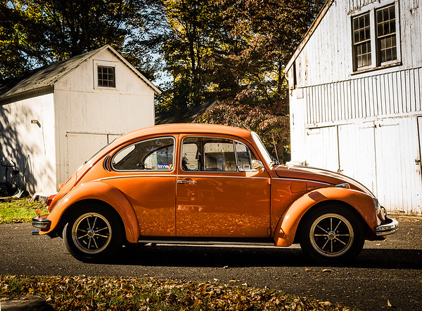 Bobs Orange Bug-14