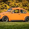 Bobs Orange Bug-71