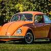 Bobs Orange Bug-56