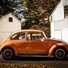 Bobs Orange Bug-15