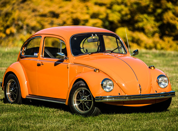 Bobs Orange Bug-39