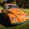 Bobs Orange Bug-99
