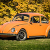 Bobs Orange Bug-78