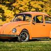 Bobs Orange Bug-83