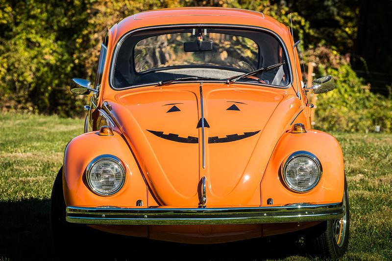 Bobs Orange Bug-89