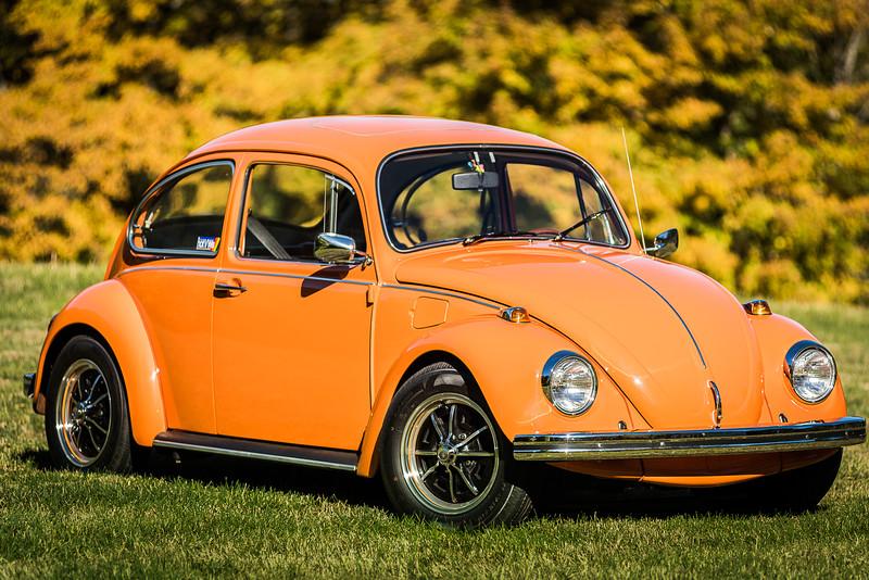 Bobs Orange Bug-47